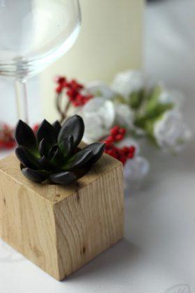 Dekoracja sali weselnej - sukulenty